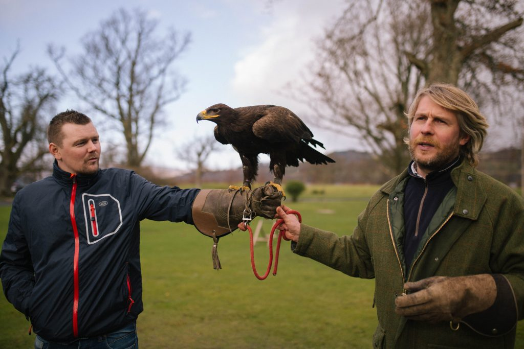 Cameron House - Team Building Falconry