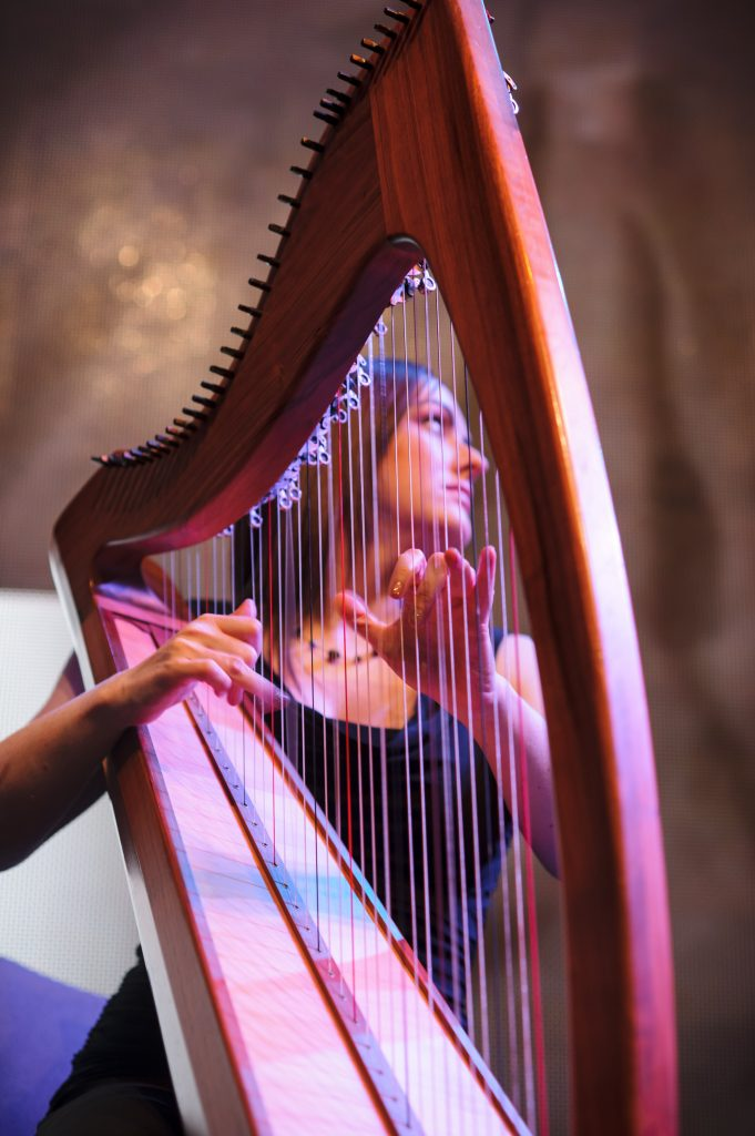 Hire String players to provide Elegant, Unobtrusive Music for your event